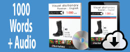 Visual dictionary + audio